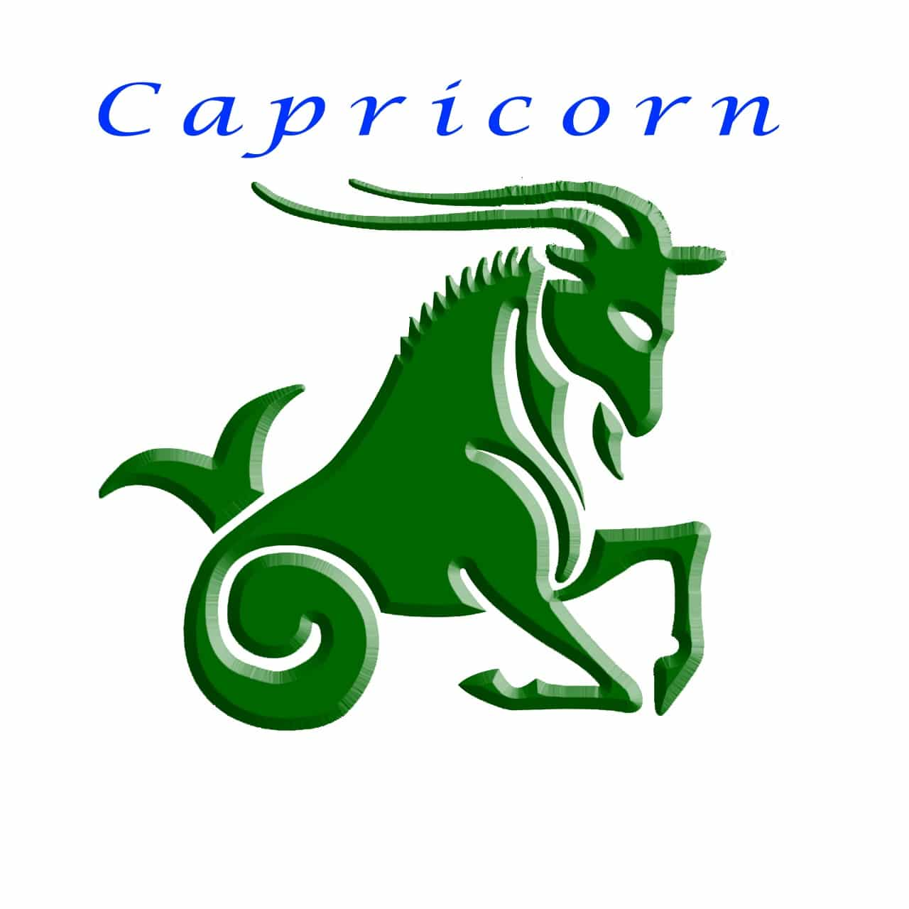 Capricorn Zodiac Sign General Characteristic And Significance