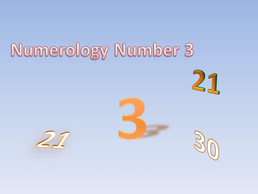 numerology match 2 and 4